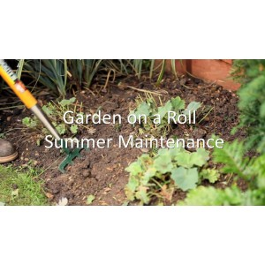 Garden on a Roll - Summer Maintenance