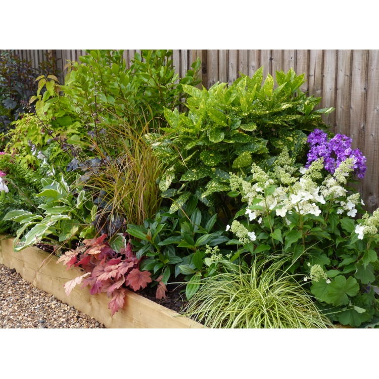 Garden Border Design Templates Container Gardening Ideas