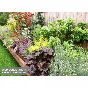 Garden On A Roll Professionally Designed Garden Borders